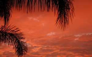 Picture Mine Tropical Sunset